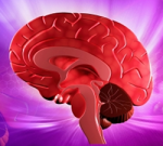Study of brain volume and cognitive function in A-Fib patients