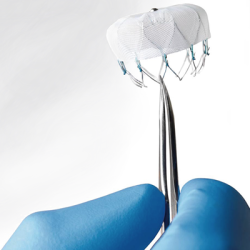 Boston Scientific's WATCHMAN™ LAA closure technology