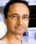 Dr Michele Haissaguerre, The Bordeaux Group