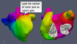 Dr Jais's Rotor Animation