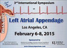 Internation Symposium LAA 2015 logo