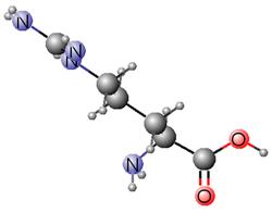 Graphic L-arginine 3D molecule