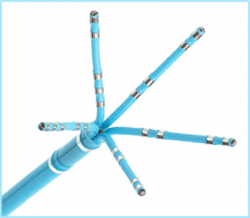 Biosense Webster PentaRay catheter