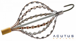 Illlustration: Acutus Medical Non-Contact Dipole basket catheter with multiple electrodes.
