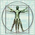 DaVinci's Vitruvian Man (Proportions of Man) at A-Fib.com